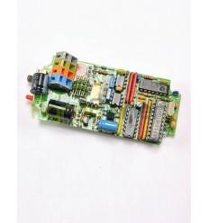 Circuito electrónico de control principal F3000 / F3002