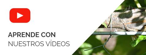 Aprende con nuestros videos